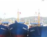 Ngư dân Bình Định đón nhận 7 tàu vỏ thép