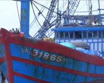 Bình Định: Chỉ có 20 tàu cá đóng theo Nghị định 67 được giải ngân vốn