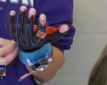 Găng tay chuyển đổi ngôn ngữ ký hiệu thành lời nói