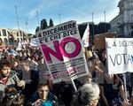 Cử tri Italy bỏ phiếu trưng cầu dân ý về sửa đổi hiến pháp