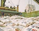 Nhiều công ty xuất khẩu gạo Việt Nam bị loại khỏi phân khúc Mỹ