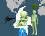 Ca đầu tiên mắc chứng đầu nhỏ nghi do virus Zika tại Việt Nam