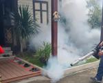 Thái Lan cân nhắc xét nghiệm virus Zika miễn phí cho tất cả thai phụ