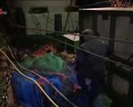 Quy định đánh bắt cá nghiêm ngặt tại châu Âu