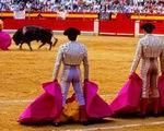 Lễ hội đấu bò tót gây chia rẽ Tây Ban Nha