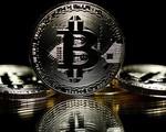 Việc làm liên quan đến Bitcoin tăng gấp 9 lần