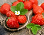 Mỹ cảnh báo dâu tây là trái cây chứa thuốc trừ sâu nhiều nhất