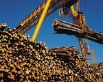 Canada chính thức kháng cáo thuế chống bán phá giá gỗ của Mỹ