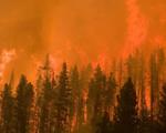 Cháy rừng ở Mỹ khiến bầu trời chuyển sang màu cam