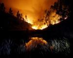 Bồ Đào Nha nỗ lực dập tắt cháy rừng