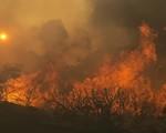 10 người thiệt mạng do cháy rừng tại bang California, Mỹ