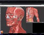 Ứng dụng công nghệ thực tế ảo 3D trong đào tạo sinh viên y khoa
