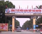 Đề nghị truy tố các cựu lãnh đạo Gang thép Thái Nguyên gây thiệt hại 830 tỷ đồng - ảnh 1