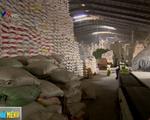 Giá gạo xuất khẩu Việt Nam tăng cao, vượt Thái Lan, Ấn Độ - ảnh 1