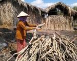 Nghệ An: Tỷ lệ hộ nghèo giảm gần 20
