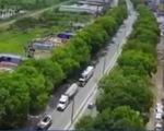 TP.HCM: Xử lý hơn 100 cây xanh quanh sân bay để giải quyết ùn tắc - ảnh 1
