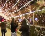 Muốn ngắm tuyết rơi ở Việt Nam, hãy đến ngay với Lễ hội mùa Đông Sa Pa