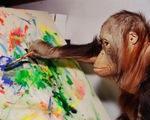 """Độc đáo phòng tranh của các """"họa sĩ"""" thuộc loài linh trưởng"""