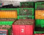 Bắt quả tang xe tải đổ hơn 6 tấn phế phẩm động vật không đúng nơi quy định - ảnh 1