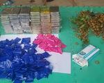 Hà Nội: Thu giữ 15 bánh heroin và 2.000 viên ma túy tổng hợp