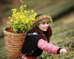 Mai Thu Huyền hóa cô gái dân tộc trên cao nguyên Mộc Châu