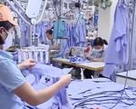 Kim ngạch xuất khẩu dệt may Việt Nam đạt kỳ tích