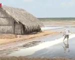 Diêm dân lo ngại trước chính sách cho hạn ngạch nhập muối