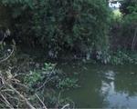 Đồng Tháp: Dân chặn đào ao vì lo ô nhiễm từ nước thải nuôi cá