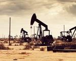 Pháp dự định dừng thăm dò và khai thác dầu khí