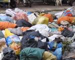 """Ngỡ ngàng """"khu phố không rác"""" ở Bình Dương - ảnh 1"""