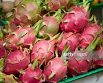 Xuất khẩu rau củ quả: Kỳ vọng 10 tỉ USD không còn xa vời?