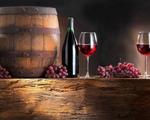 Rượu vang giúp giảm calorie tốt hơn bia và phô mai