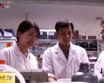 Hợp tác giáo dục Việt Nam - Hàn Quốc phát triển vượt bậc