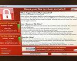 Europol cảnh báo 1 số vụ tấn công mới tinh vi hơn WannaCry
