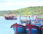 """Nhiều ngư dân không """"mặn mà"""" với bảo hiểm tàu cá"""