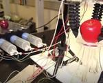 Bàn tay robot có thể… lắp bóng đèn