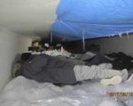 Mỹ giải cứu hàng chục người di cư trong thùng xe đông lạnh