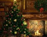 Sẽ thiếu hụt cây thông Noel trong mùa lễ Giáng sinh