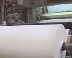 Trung Quốc thu mua lượng lớn giấy tại Việt Nam