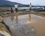 Những biện pháp hỗ trợ người dân bị thiệt hại khi thủy điện Hòa Bình xả lũ