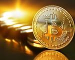 Giá trị đồng tiền kỹ thuật số tiếp tục giảm mạnh