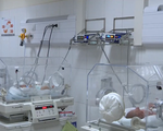 30% trẻ sinh non có nguy cơ bị mù lòa vĩnh viễn - ảnh 1