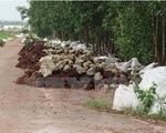 Phát hiện hàng nghìn bao chất thải giữa rừng tràm Đồng Nai