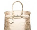 Chiếc túi Hermes Birkin được bán đấu giá với mức kỷ lục