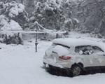 Tuyết rơi dày đặc giữa mùa hè ở miền Nam Australia