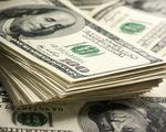 Các đại lý thu đổi ngoại tệ mua vào hơn 200 triệu USD/năm