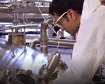 Ứng dụng men vi sinh Probiotic vào sữa
