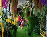 'Xe bus rừng xanh' hút hồn tại Đài Loan (Trung Quốc)