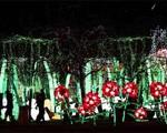 Rực rỡ triển lãm đèn lồng ở Pháp
