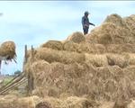Nông dân và sự thích ứng với thiên tai